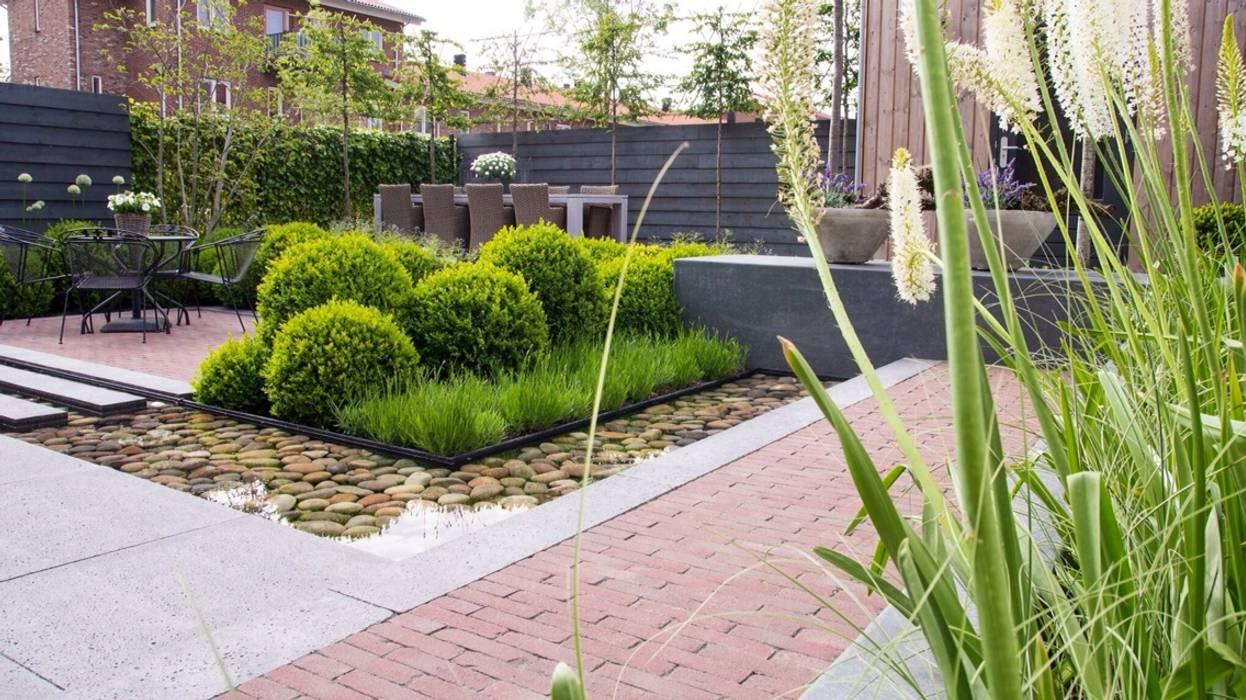 Hoveniersbedrijf Tim Kok Moderner Garten