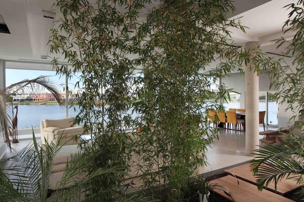 Casa del Cabo Jardines de invierno modernos de Remy Arquitectos Moderno