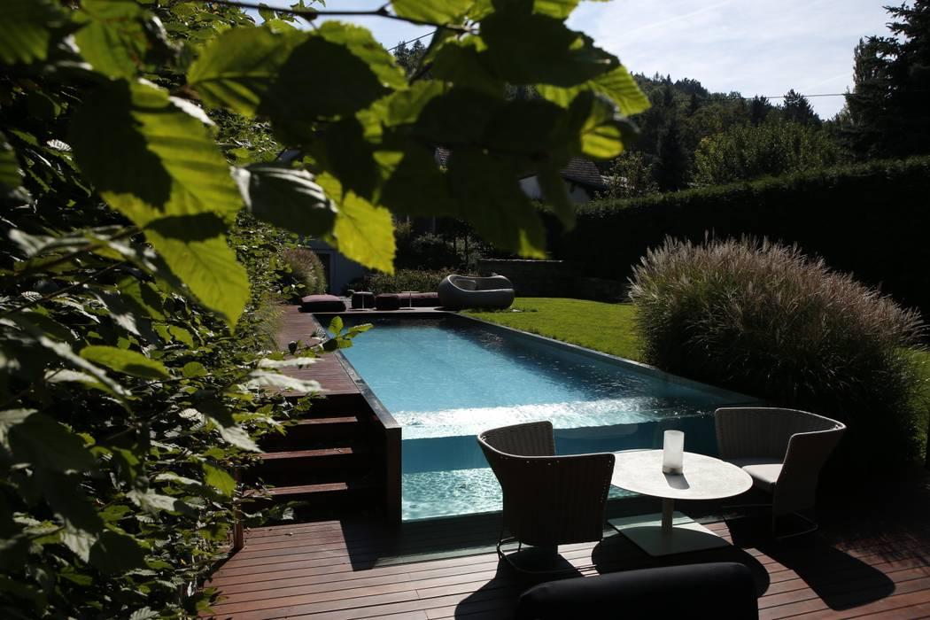 Pool im Wienerwald Moderne Pools von BEGRÜNDER Modern