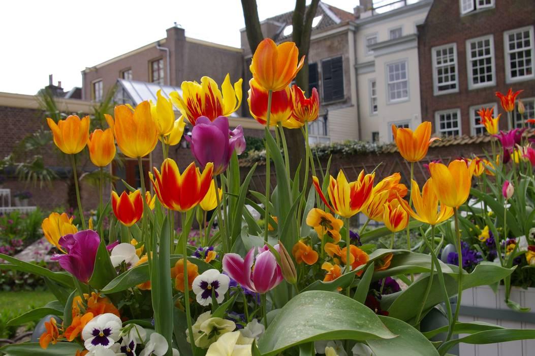 Flora's Hof in Utrecht Klassieke tuinen van groenpartners Klassiek