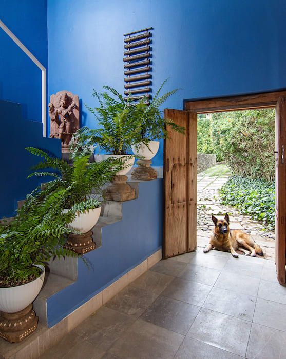 Residencia Tepoztlán Pasillos, vestíbulos y escaleras modernos de Olivia Aldrete Haas Moderno