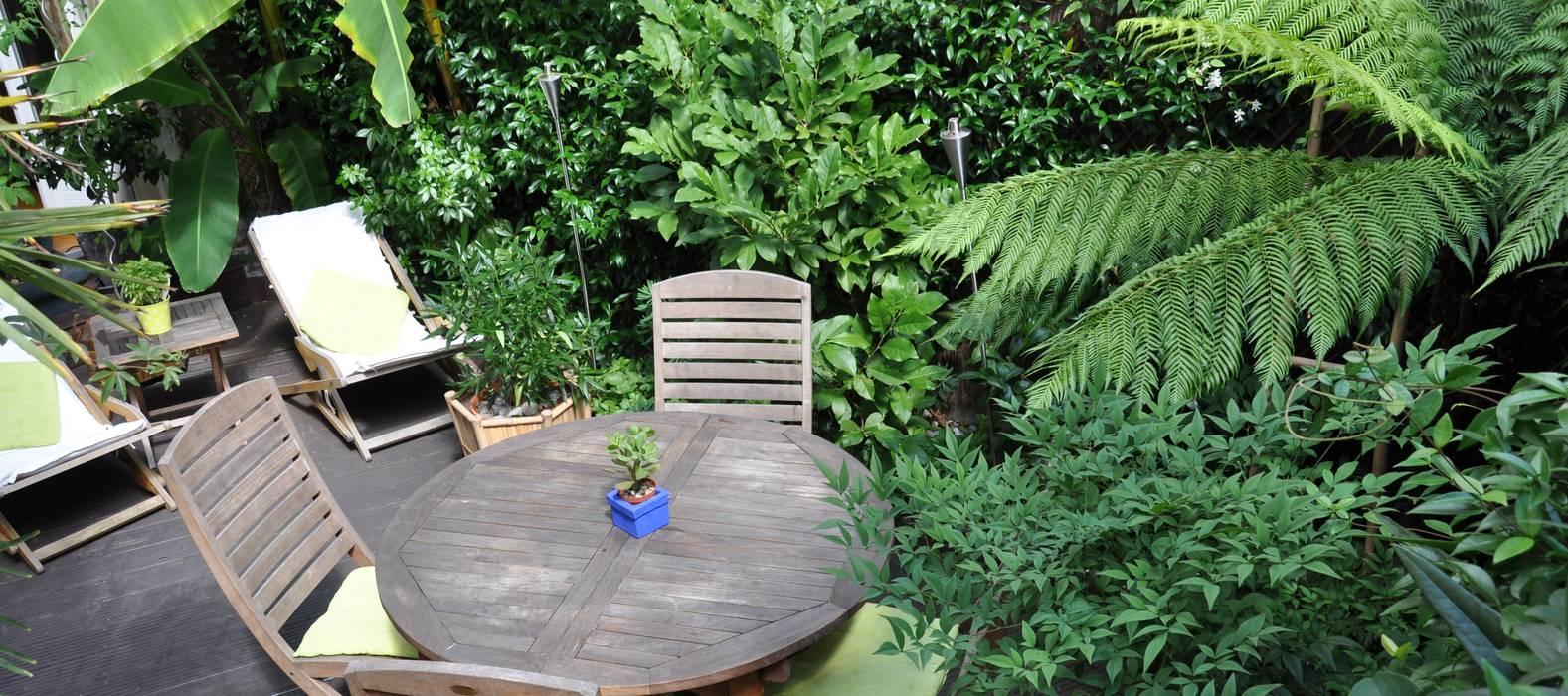 Jardin exotique à Enghien-les-Bains: Jardin de style de style Tropical par Taffin