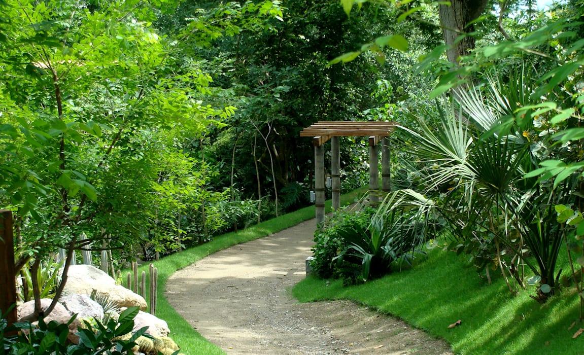 Tropical style gardens by BR ARQUITECTOS Tropical