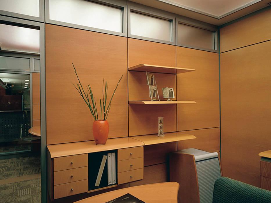 modern  by Riviera, Modern Wood Wood effect