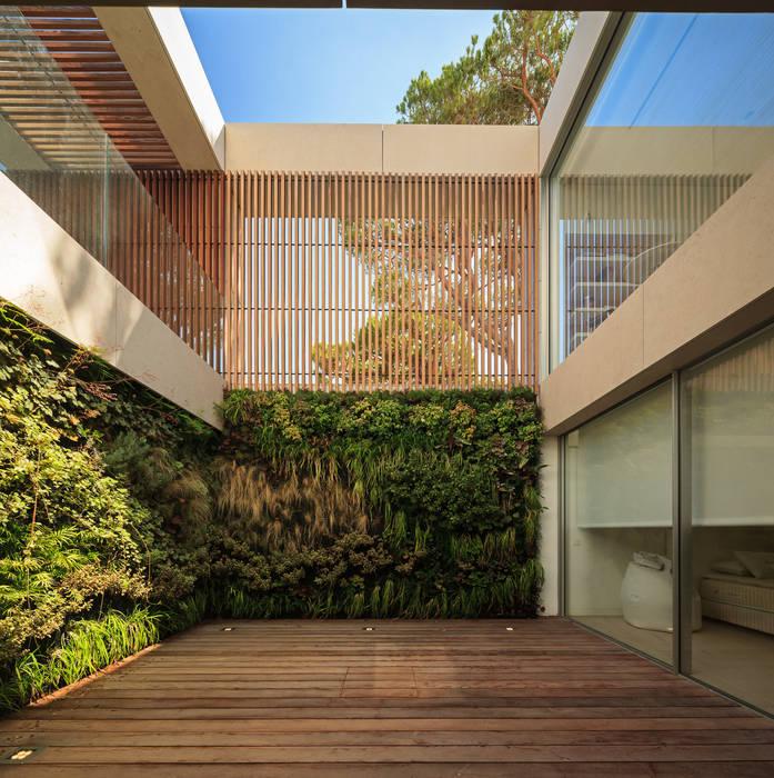 modern  von LC Vertical Gardens, Modern