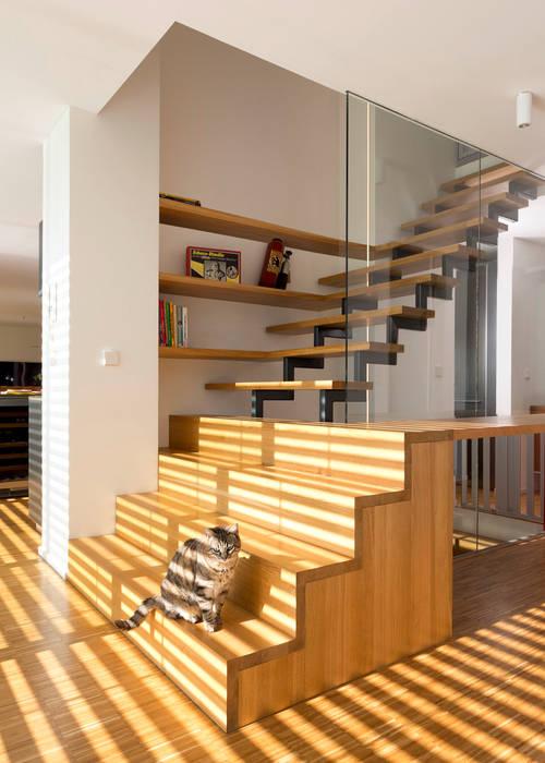 Cherry Blossom House (German Passivhaus) Modern corridor, hallway & stairs by ÜberRaum Architects Modern
