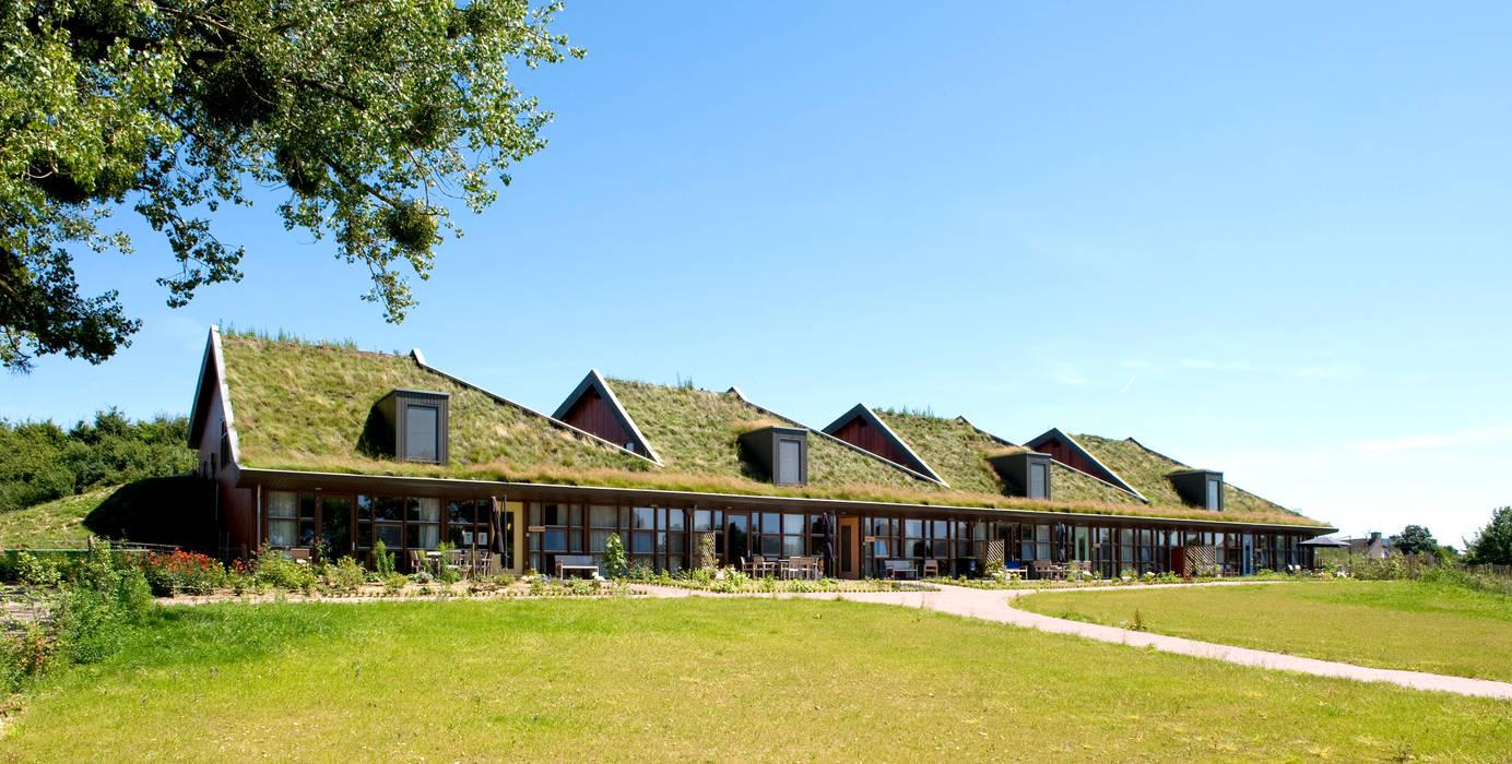 Voorzijde:  Huizen door stripesarchitects, Landelijk