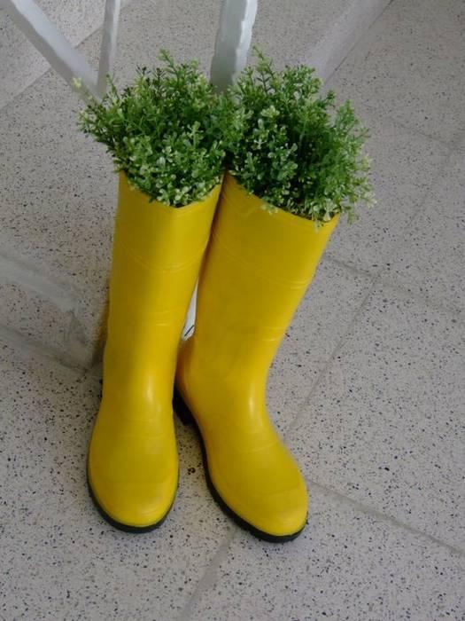 bitki botları cyprus interiors Eklektik