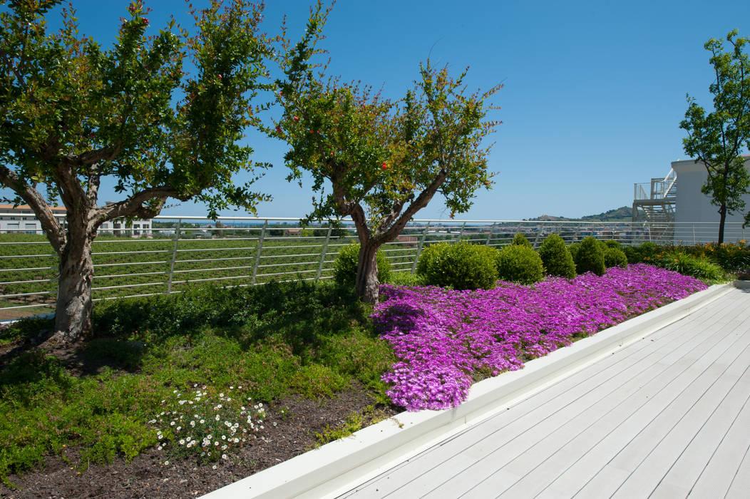Giardino Pensile Intensivo Semplice:  in stile  di Febo Garden landscape designers, Mediterraneo