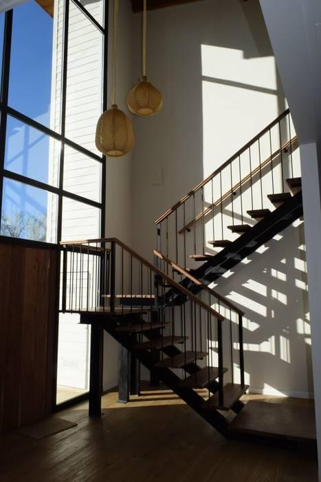 Hall de acceso Pasillos, vestíbulos y escaleras modernos de 2424 ARQUITECTURA Moderno Madera Acabado en madera