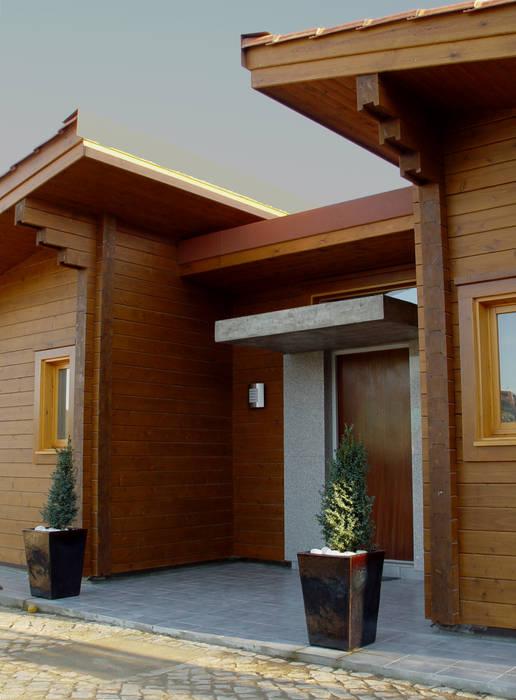 Moradia no Cadaval Modern Windows and Doors by MIGUEL VISEU COELHO ARQUITECTOS ASSOCIADOS LDA Modern