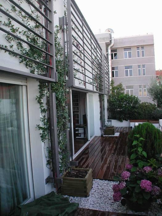 Terraza Madrid Balcones y terrazas de estilo moderno de Estudio Marta Byrne Paisajismo Moderno