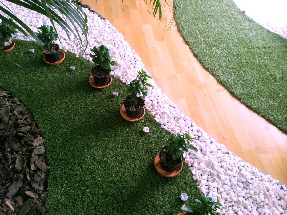 Reforma Viv Monaco torradoarquitectura Modern garden