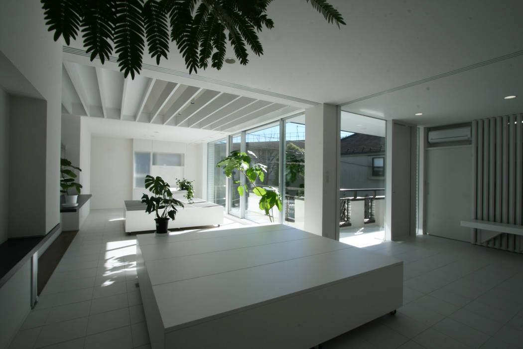主室1~母の庭(玄関庭) モダンデザインの 多目的室 の 伊波一哉建築設計室 モダン 木 木目調