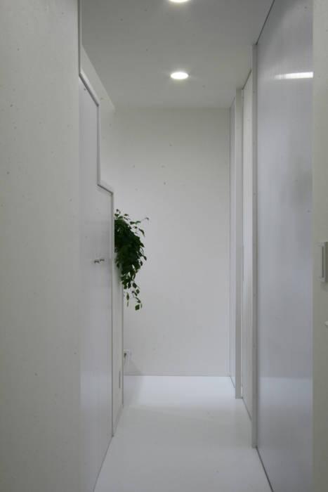 Couloir, entrée, escaliers modernes par 伊波一哉建築設計室 Moderne Bois Effet bois