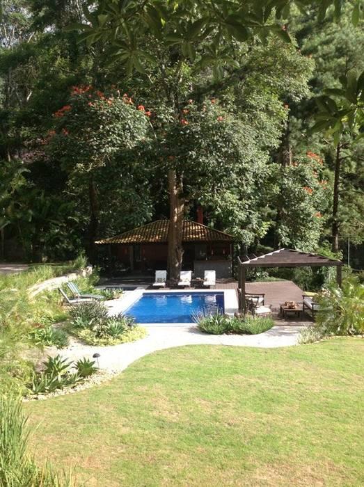 Maria Claudia Faro Tropical style pool