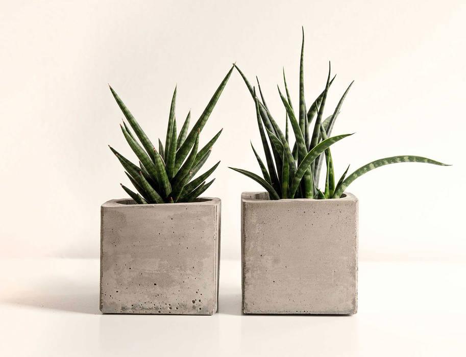 Übertöpfe aus Beton von 100% Beton Minimalistisch