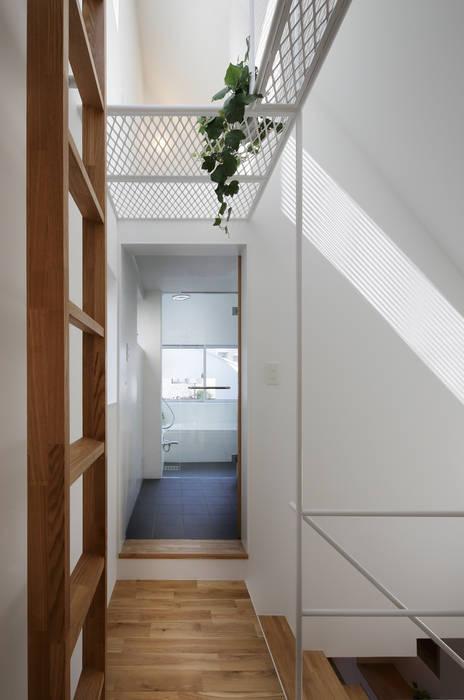 白金の家 アトリエ スピノザ モダンスタイルの 玄関&廊下&階段