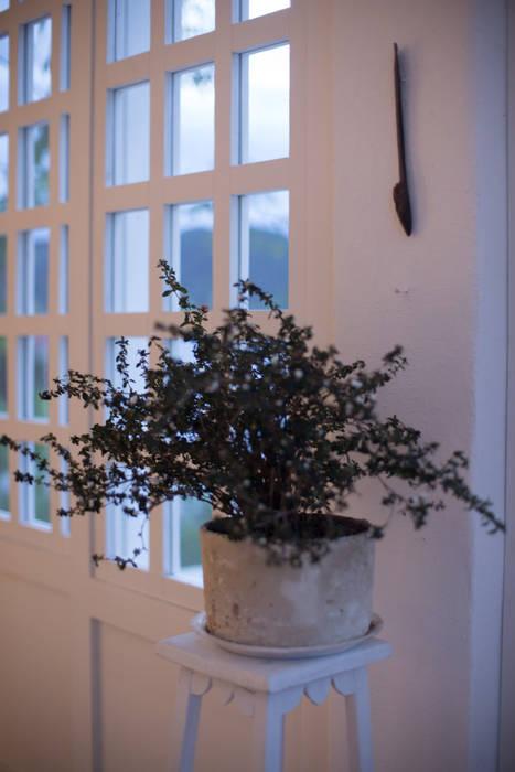 Jendela oleh SDHR Arquitectura, Klasik Kayu Wood effect
