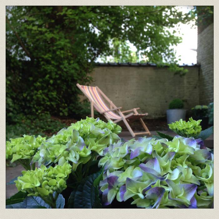 Détail de l' hortensia avec vue sur le sous-bois: Jardin de style de style Classique par Urban Garden Designer