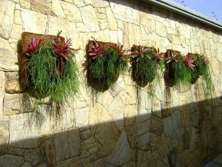 Tropischer Garten von MC3 Arquitetura . Paisagismo . Interiores Tropisch