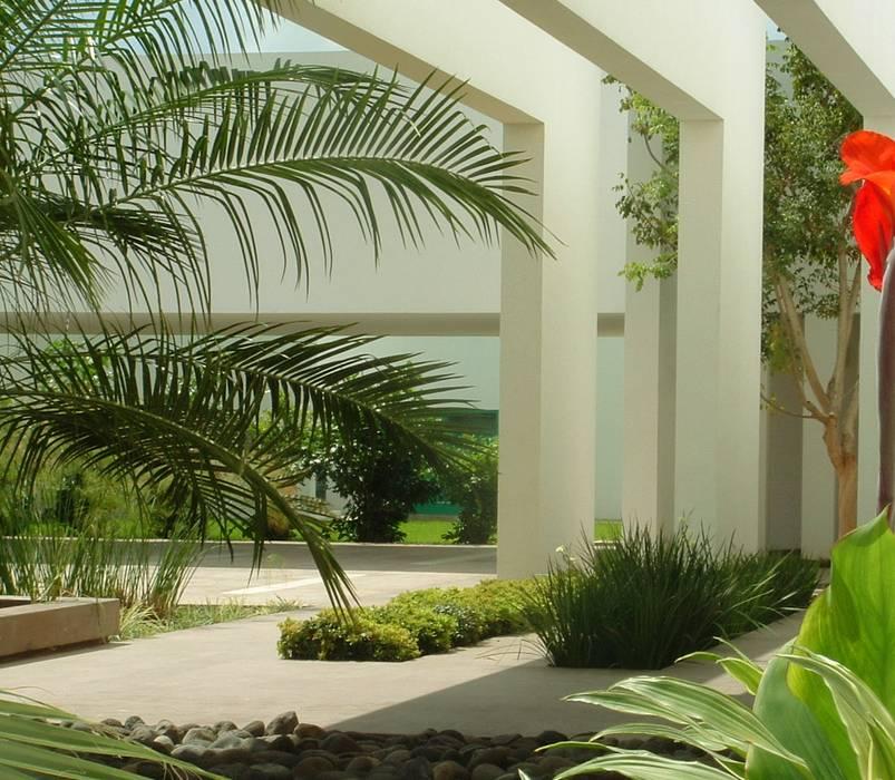 Vestíbulo de acceso con jardineras y espejo de agua: Jardines de estilo minimalista por EcoEntorno Paisajismo Urbano