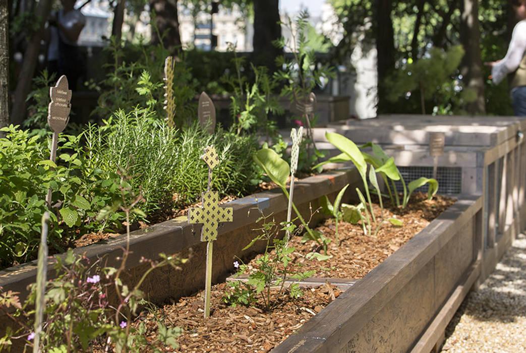 Plantes utiles: Centre d'expositions de style  par Fertiles