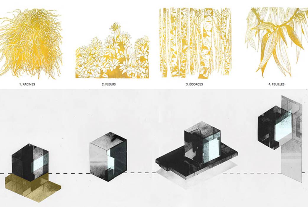 Cabanes des parfumeurs Fertiles Musées modernes