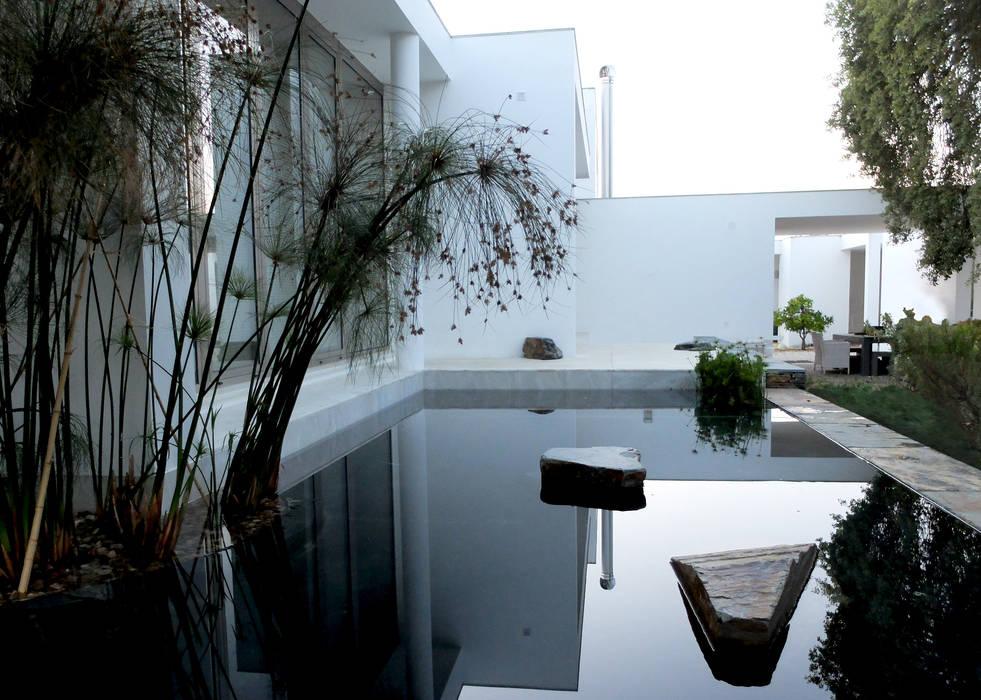 Jardin de style  par Atelier Jardins do Sul, Éclectique