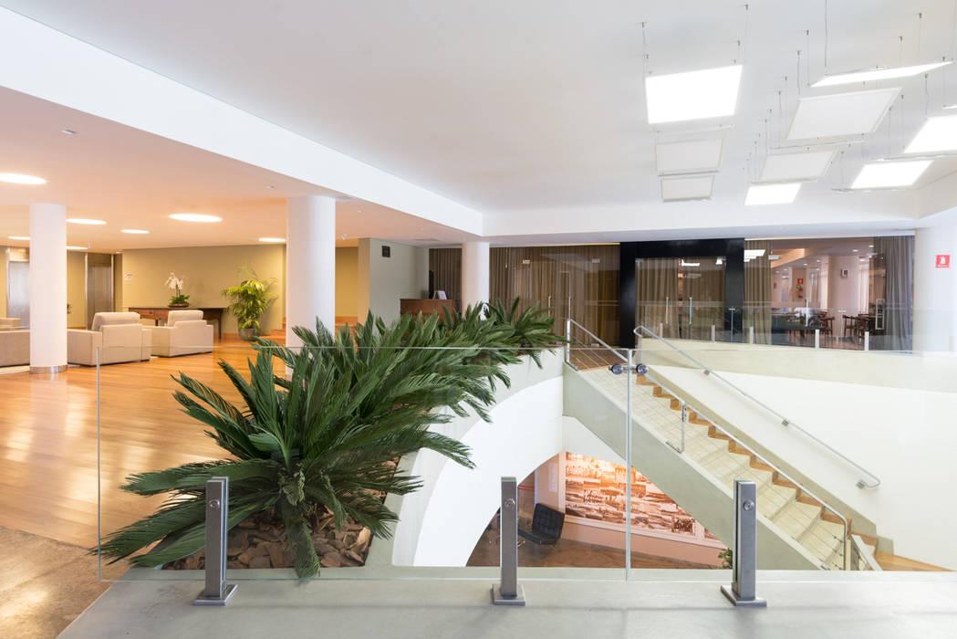 Svetlana Plantas Preservadas Interior landscaping