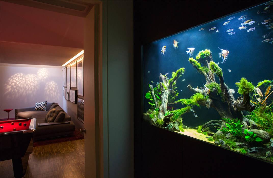 Pasillos y recibidores de estilo  por Aquarium Architecture
