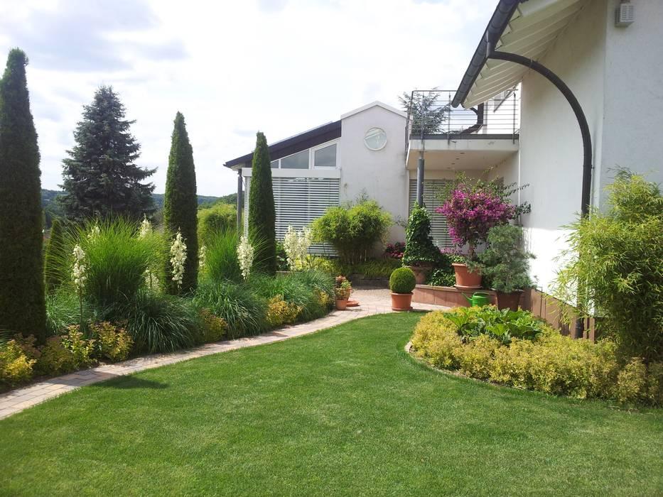 modern grass garden Jardins modernos por Planungsbüro STEFAN LAPORT Moderno