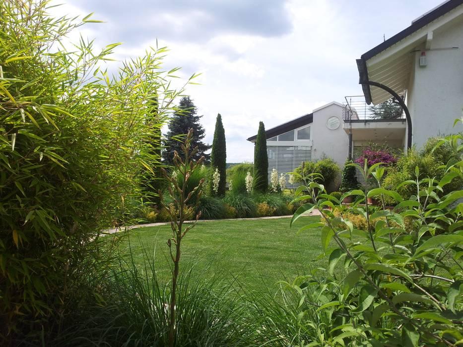 Moderner Pflegeleichter Garten Kombination Von Grasern Und