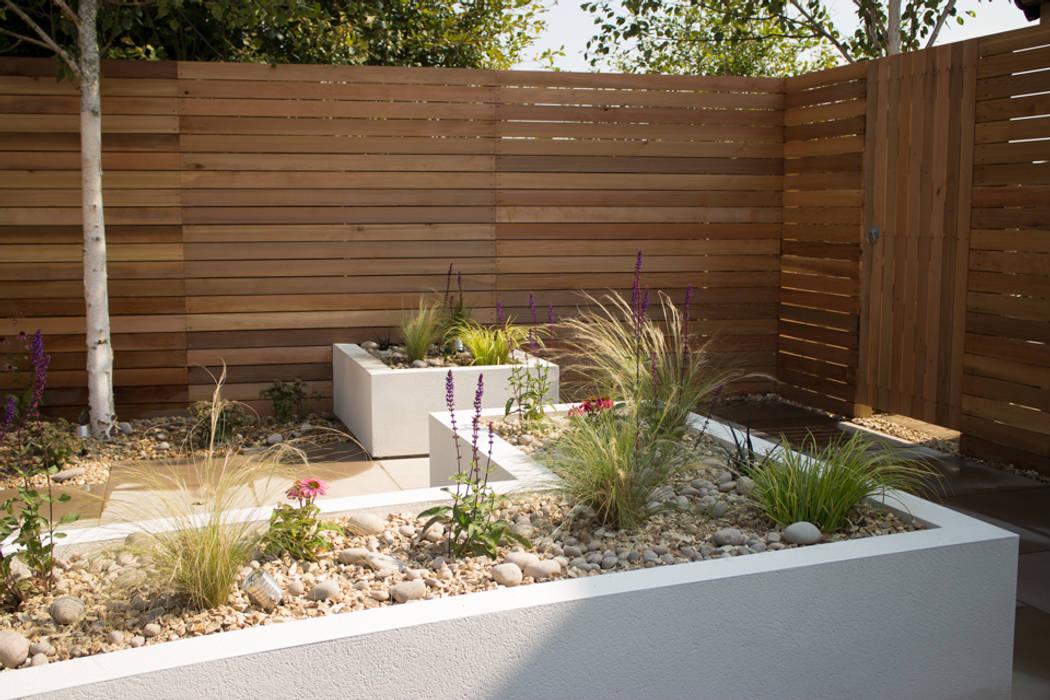 Cool but Funky, Contempoary Garden Moderner Garten von Yorkshire Gardens Modern