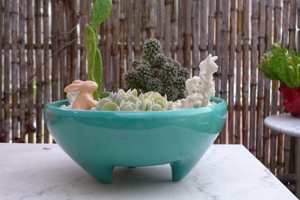 PAILA Jardines de estilo minimalista de CURADORAS Minimalista Cerámico