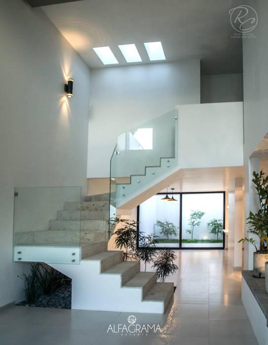 Modern Corridor, Hallway and Staircase by Alfagrama estudio Modern Concrete