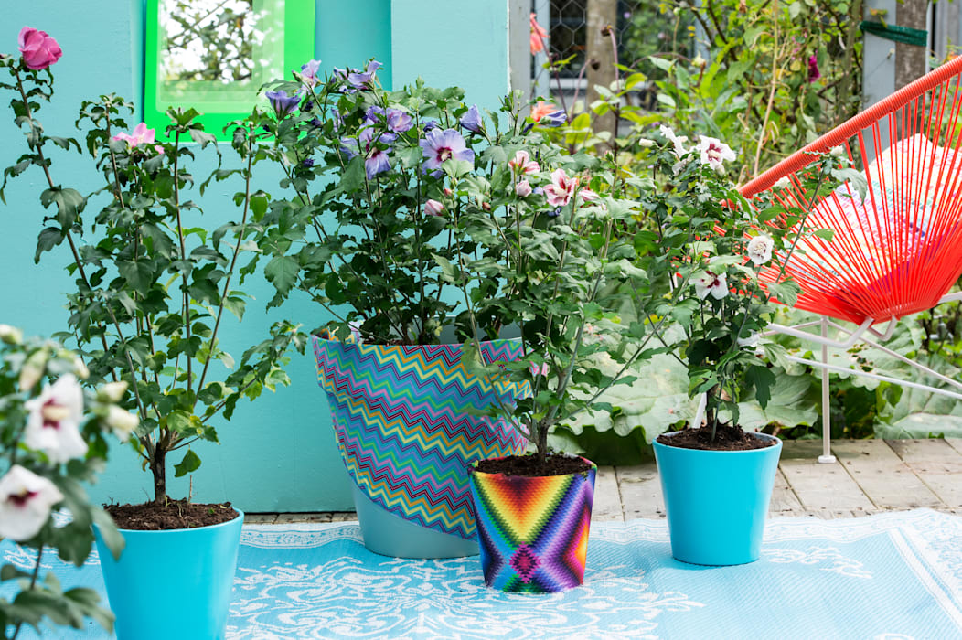 Patios & Decks by Pflanzenfreude.de,