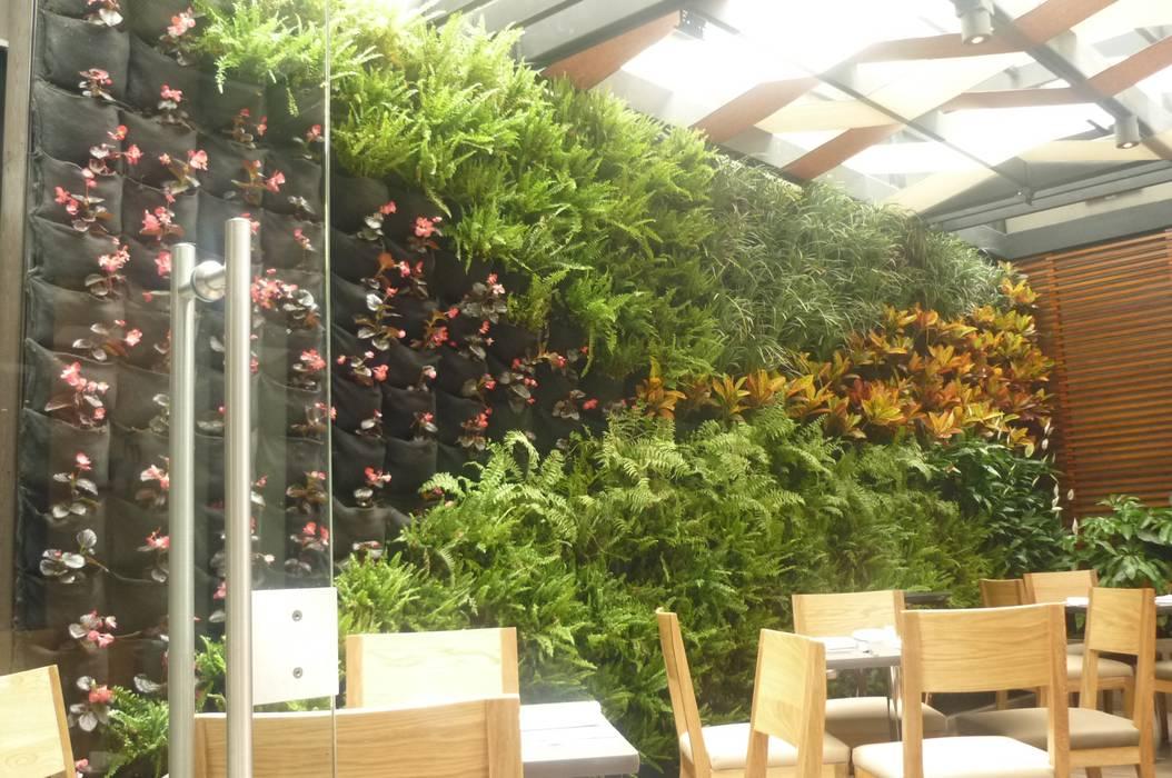 jardín vertical interior de ARQUIOBRA Tropical Bambú Verde