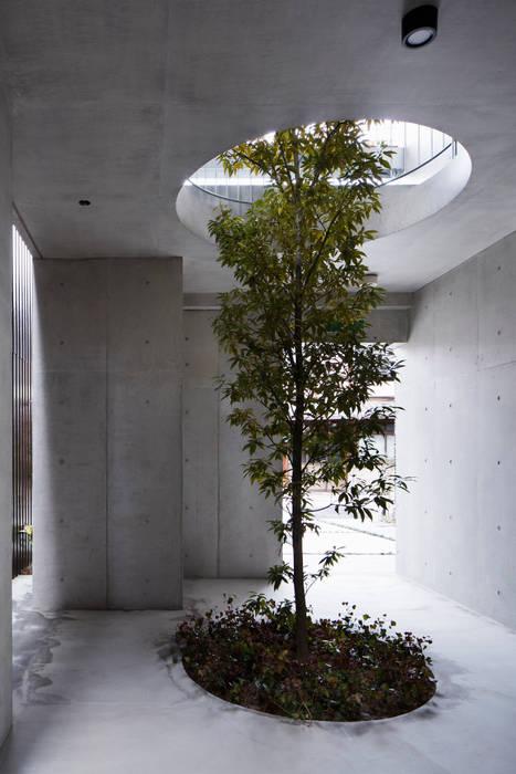 株式会社 藤本高志建築設計事務所 Modern style gardens Concrete Green
