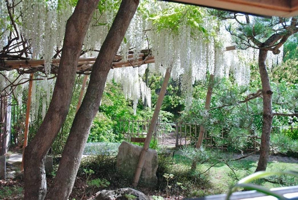 Un jardin d'inspiration japonaise Jardin méditerranéen par Jean-Jacques Derboux Méditerranéen