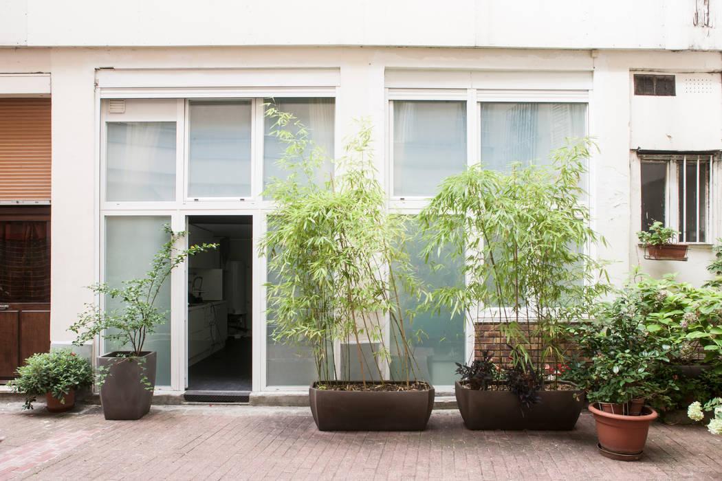 Nouvelle entrée: Fenêtres de style  par Olivier Olindo Architecte