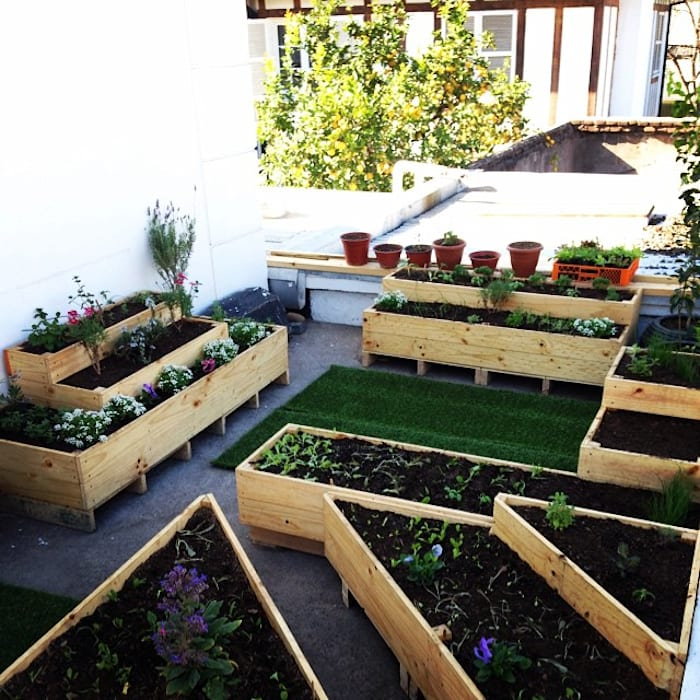 Agricultura Urbana / Huerta Urbana Jardines rurales de WILD PROYECT Rural