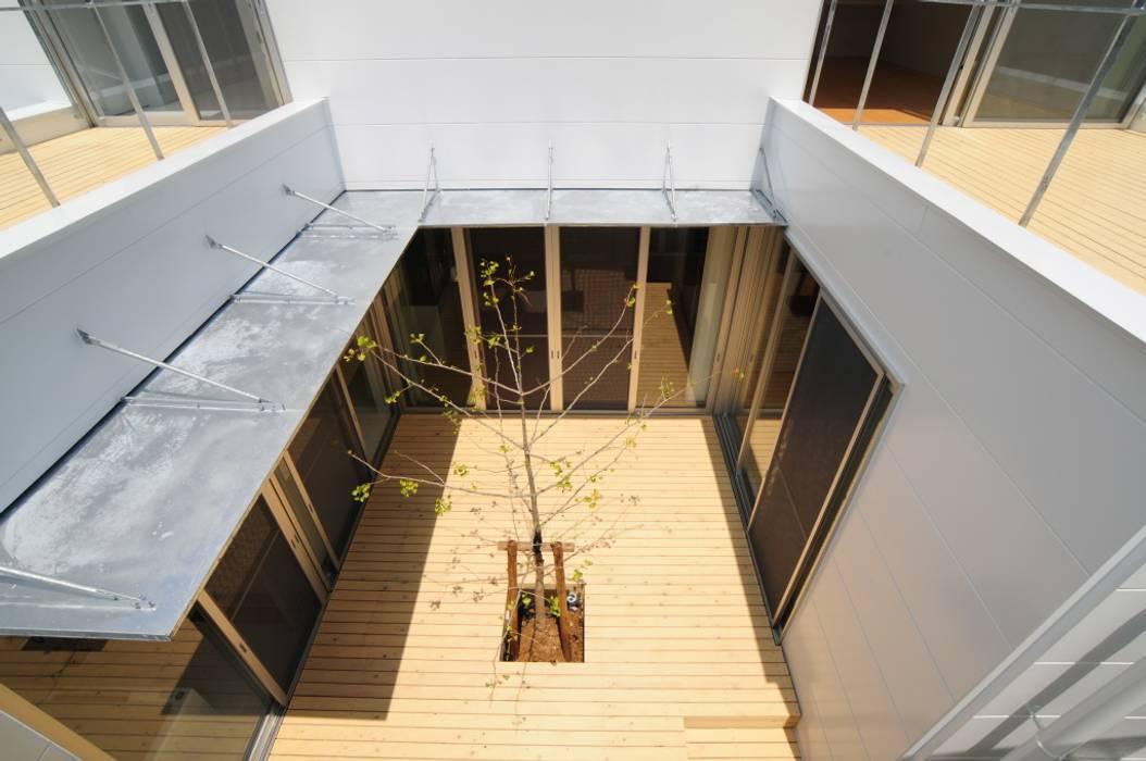 有限会社 橋本設計室 Modern garden