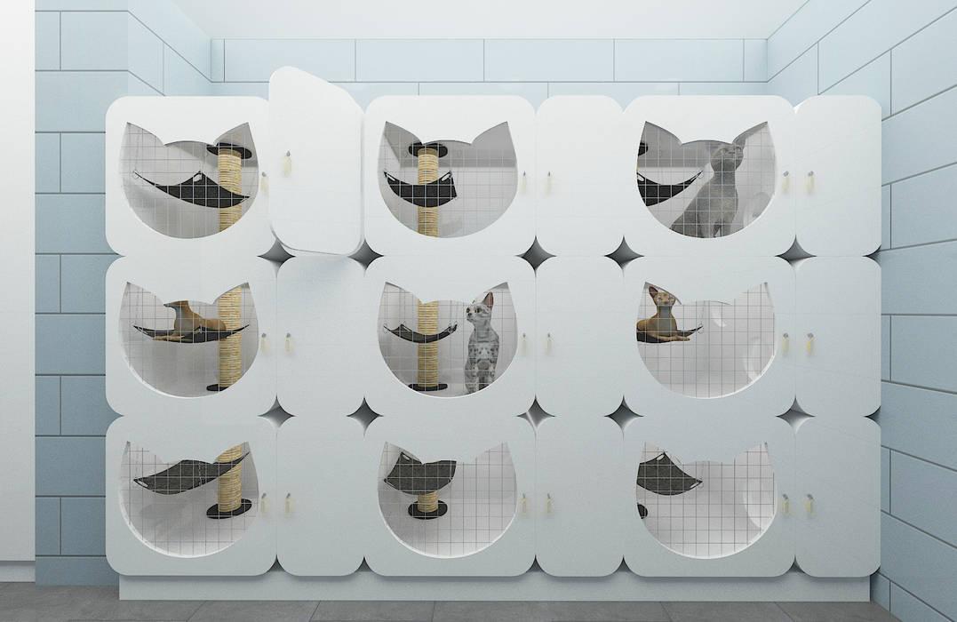 VetDora Veteriner Kliniği // Konsept Tasarım + Projelendirme + Uygulama Modern Klinikler Baki & Başaran İç Mimarlık Modern