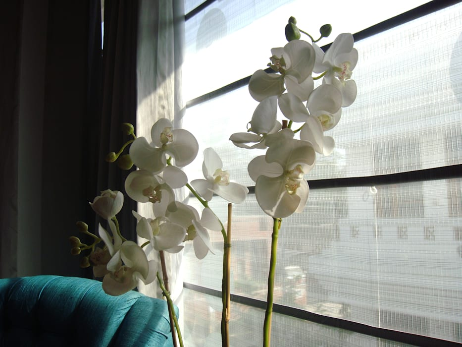 Potted orchids adorn window sheers by renu soni interior design