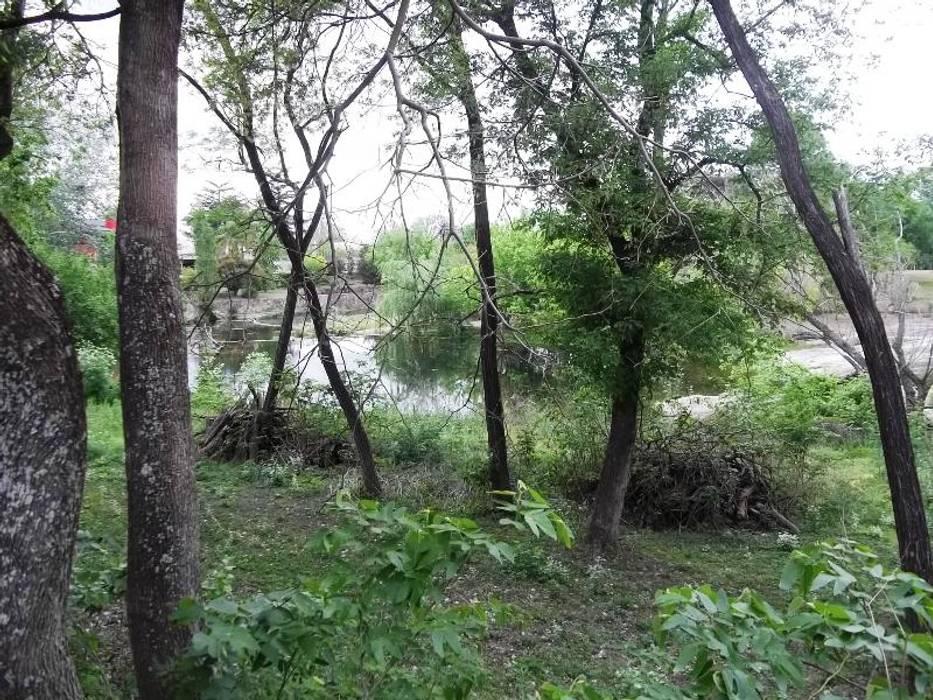 Abundante vegetación: Jardines de estilo  por Liliana almada Propiedades