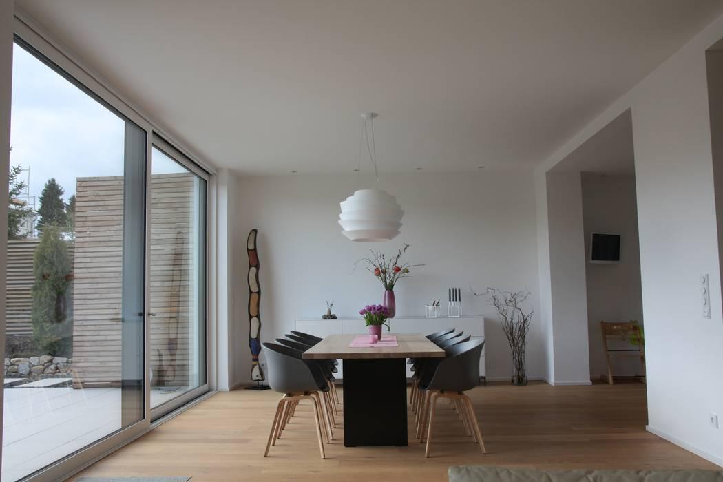 Exklusive Esszimmermöbel Modern Von Quadrat Einrichtungen