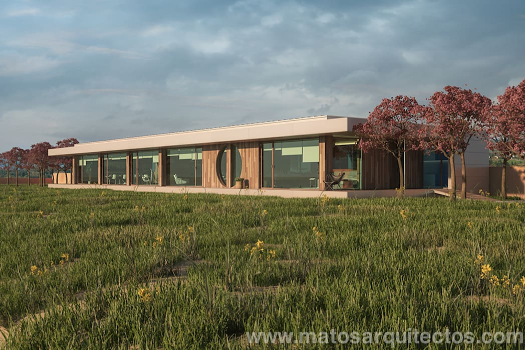 House by River side Modern Houses by Matos Architects Modern Solid Wood Multicolored