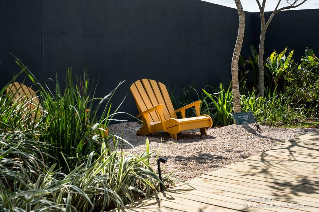 Casa BN Jardins tropicais por alexandre galhego paisagismo Tropical