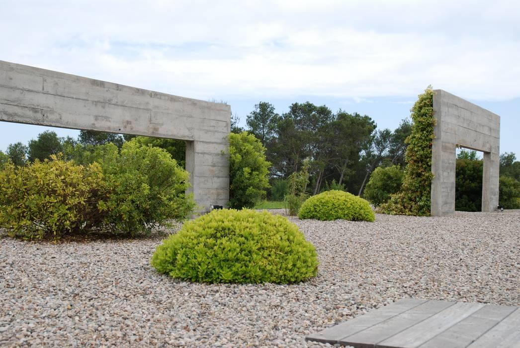 Topiaires: Jardin de style de style Moderne par JARDIN GECKO